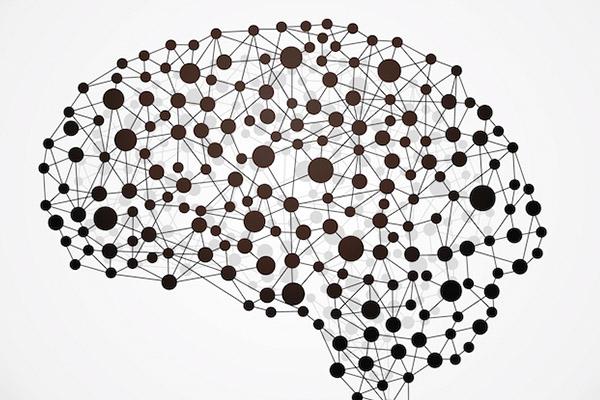 neurologia211