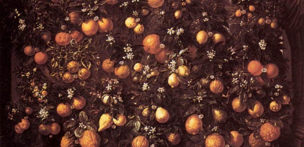 Bartolomeo Bimbi, Bartolomeo Bimbi, Melangoli, limoni e limette, 1715. Olio su tela. Villa medicea di Poggio a Caiano – MIBAC. Source Wikipedia