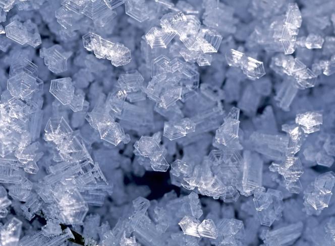 hielo XVII