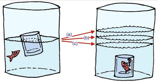 Fig. 2: ¿Qué ocurrirá con el nivel del agua?