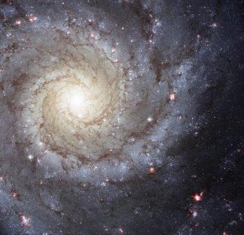 """Figura 4. M74, una de las cien mil millones de galaxias, verdaderos """"Universos Isla"""" como las llamó el filósofo Kant (1724-1804), a distancias increíblemente lejanas."""