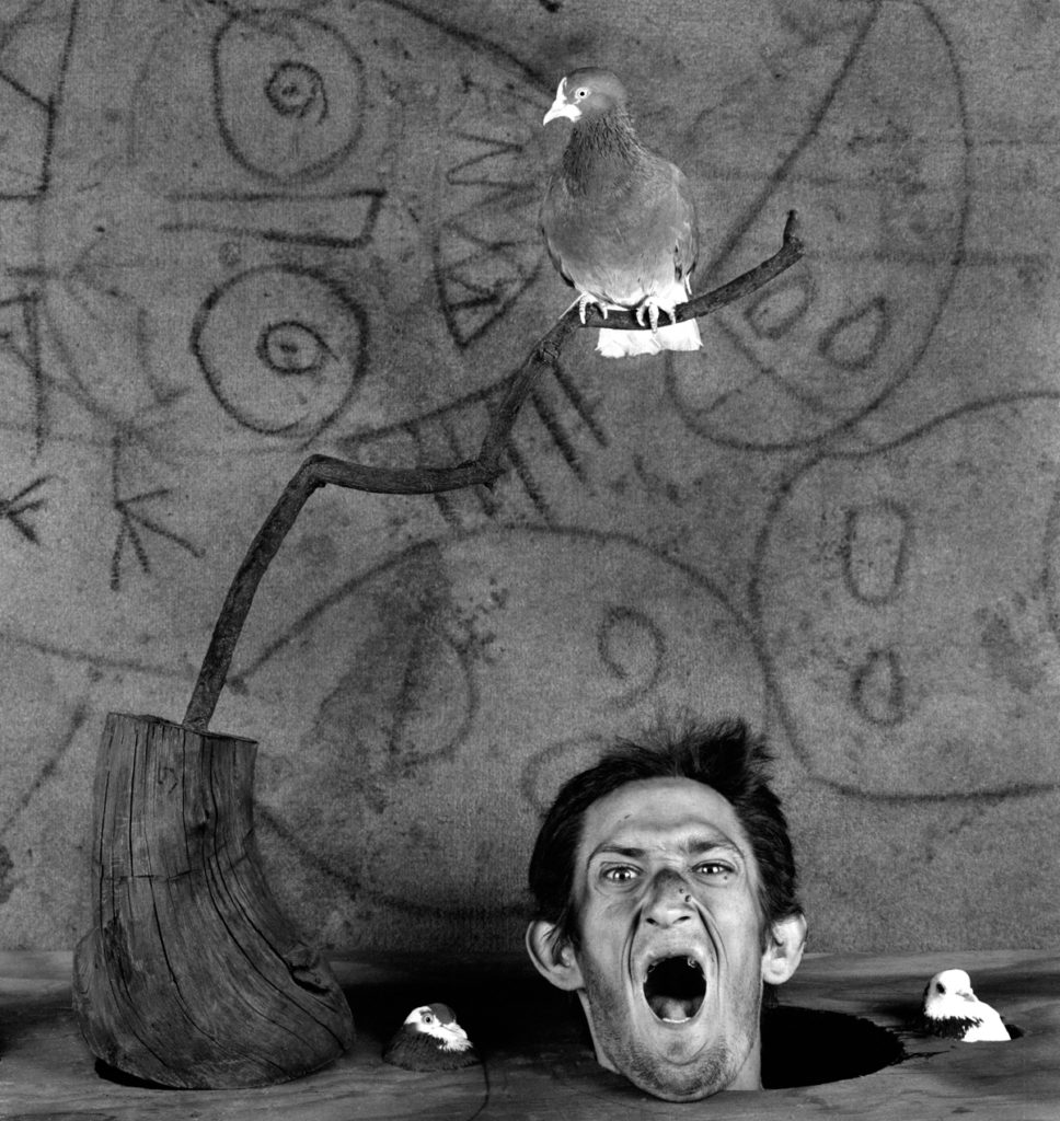 Roger Ballen, Scream 2, 2012,