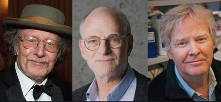 Jeffrey C. Hall, Michael Rosbash y Michael W. Young
