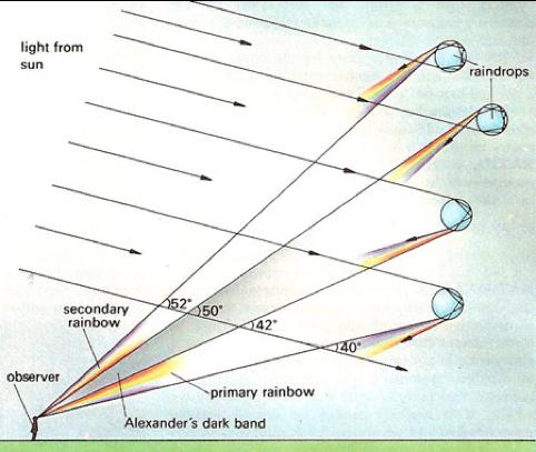 Figura 2. Origen de los dobles arcos irises y de la banda de Alexander [2].