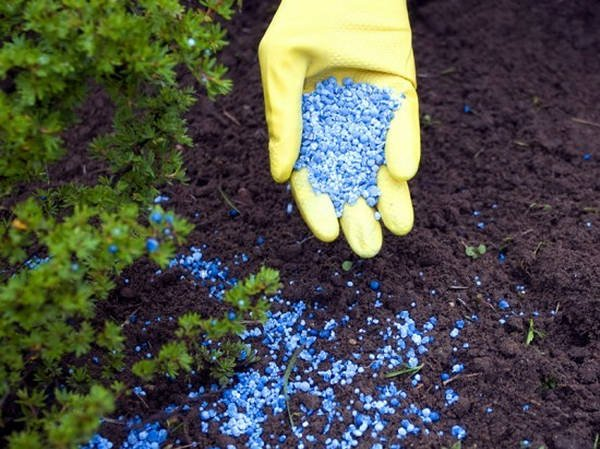 fertilizante-artificial
