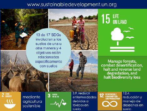 Figura 1: Ejemplo de algunas de las 17 metas de Naciones Unidas para el Desarrollo Sustentable (SDG), relacionadas con Suelos.