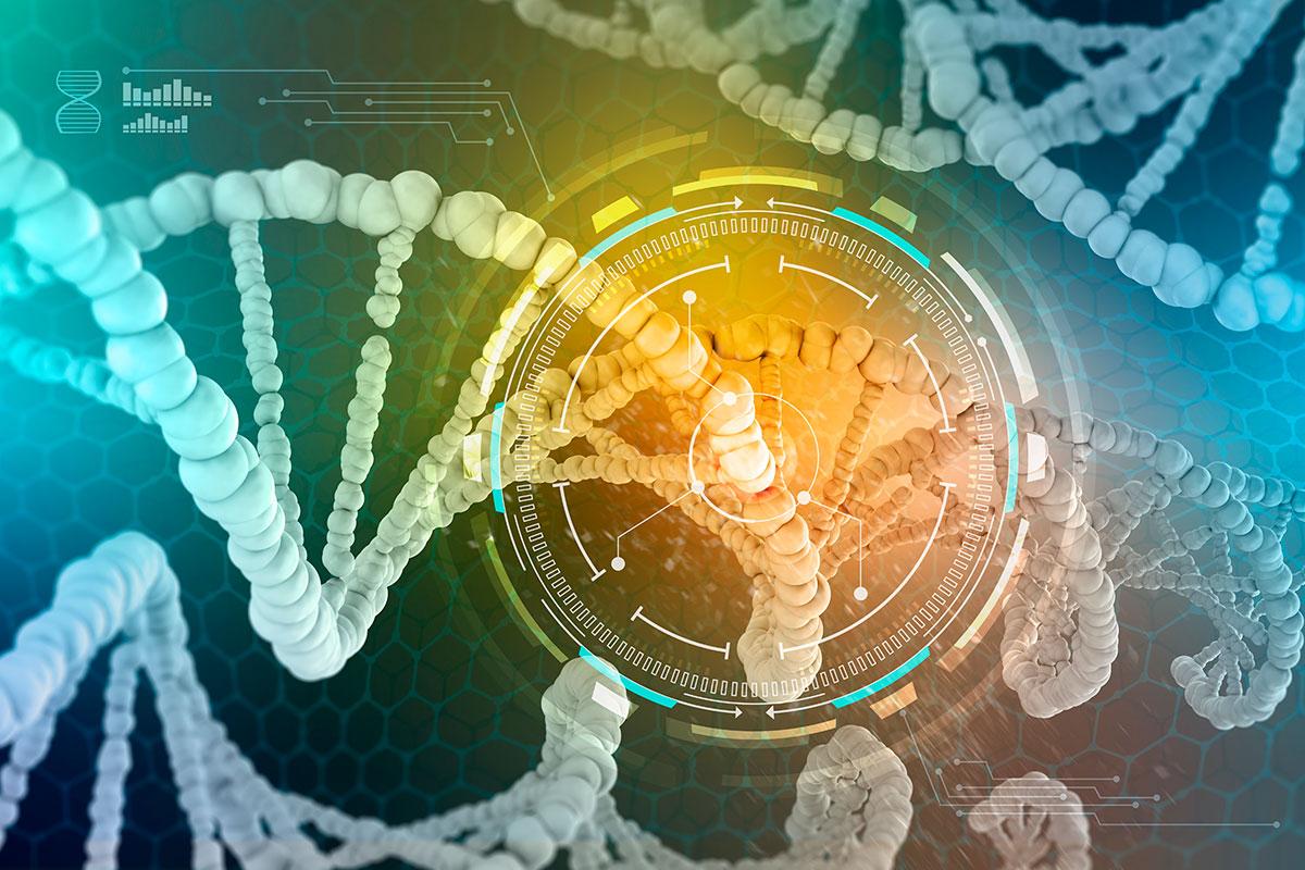 ADN-recombinante